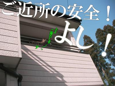 05 主にご報告〜っと!.jpg